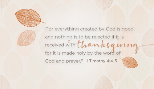 Thanksgiving verse 1 Timothy 4:4-5